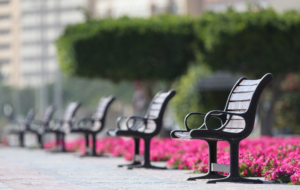 Black metal benches lining a walkway with trees and pink flowers behind them.